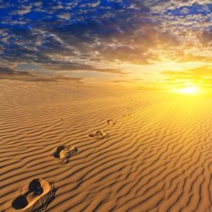 evening sandy desert